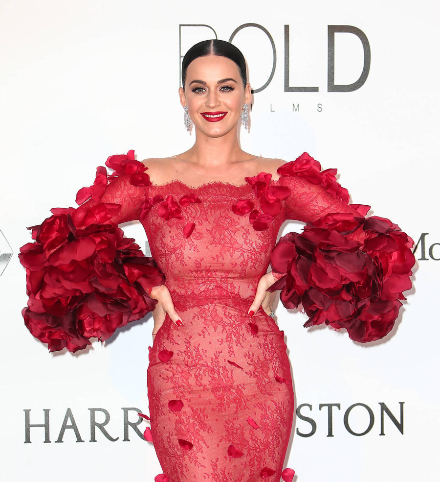 Katy Perry Helps Deliver Sister's Second Child