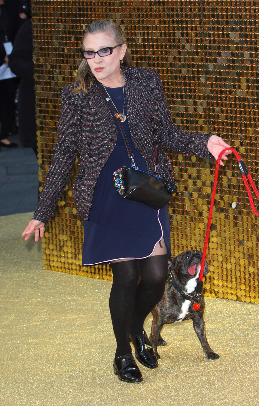 Carrie Fisher's Dog Gary Moves In With Her Assistant - Report