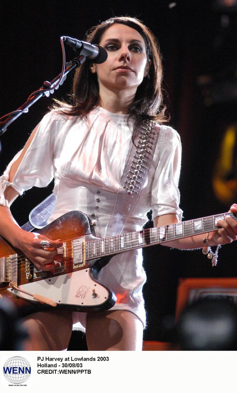 Pj Harvey Lands U.k. Album Number One As Prince Returns To The Top 20