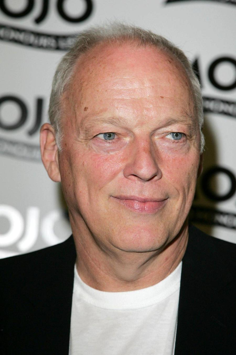 David Gilmour And New Order To Perform In Charity Concert Series
